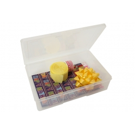 Fischer 1 Compartment Storage Box 0471295