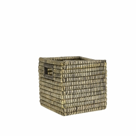 Kans Grass Square Small