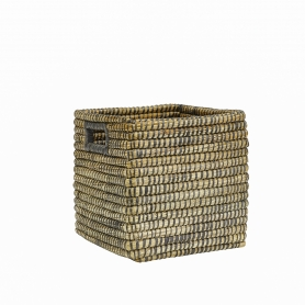 Kans Grass Square Medium