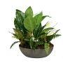 Plant Pot 55cm